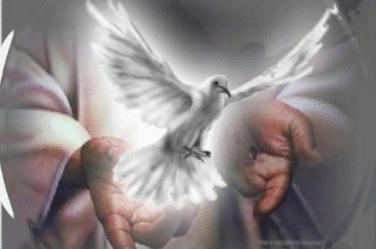 Sexto Domingo da Páscoa – O Paráclito, o Espírito da Verdade – São ...