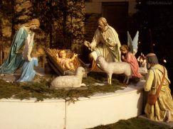Resultado de imagem para imagem do presépio  - no vaticano